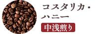 コスタリカ・ハニー 中浅煎り 200g